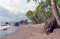 The Best Black Sand and White Sand Beaches in Costa Rica