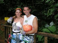 Canopy tours around Manuel Antonio National Park