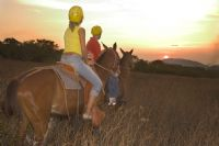 Travel on horseback through Guanacaste
