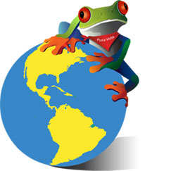 Javi the Frog & Pura Vida Newsletter