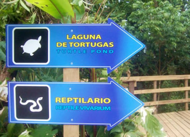 Attractions at Veragua Rainforest Research & Adventure Park