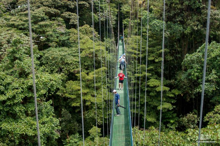 Amazing view to Hanging Bridges at Arenal location